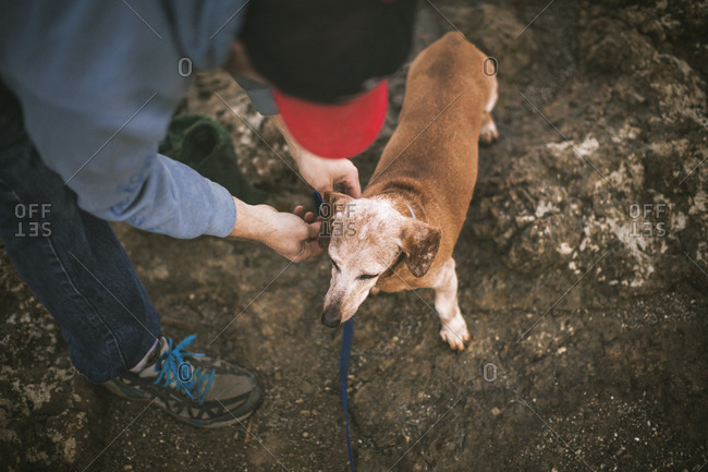 Man putting leash on dog standing on rocky ground
