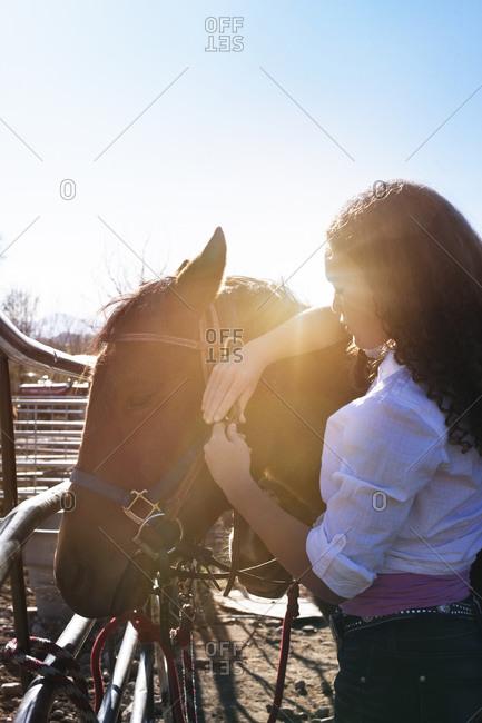 A woman buckles a bridal onto a horse