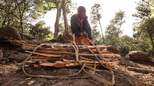 Mount Kulal, Kenya - February 23, 2015: Woman tying firewood with a rope