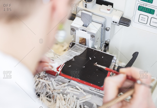 Device for the preparation of histological slides
