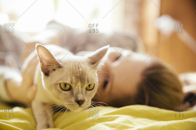 Woman with Burmese cat at home