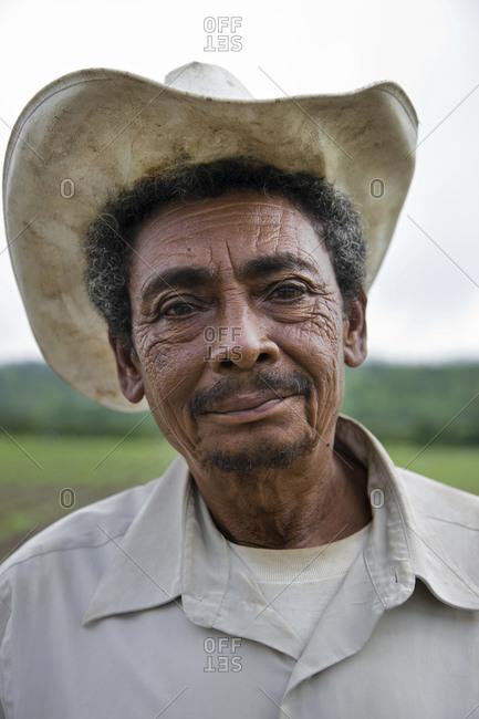 A tobacco farmer standing in a field in the Jamastran Valley, Danli, Honduras