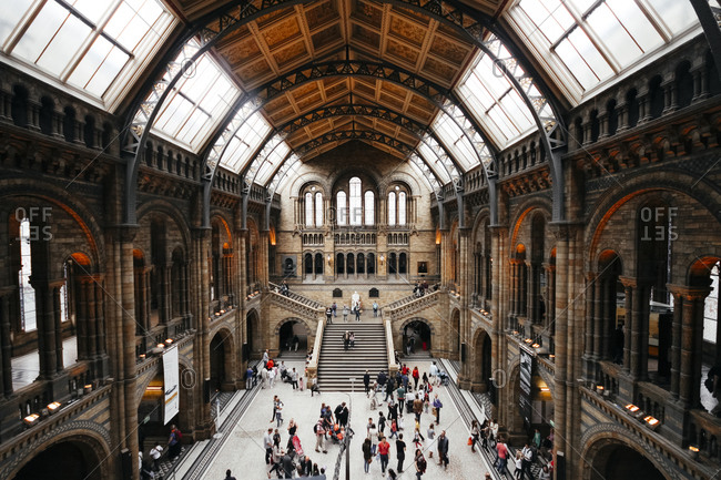 London, England - June 15, 2013: Hall of the Natural History Museum