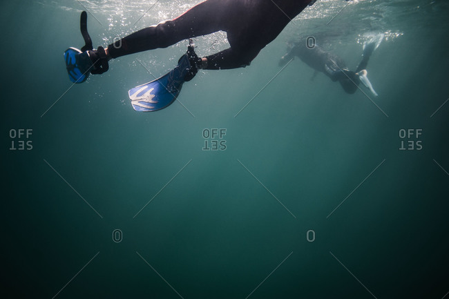 People diving in the ocean
