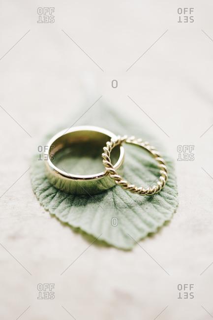 Gold wedding rings on leaf