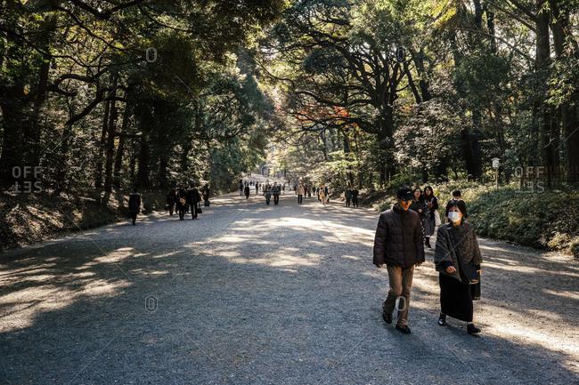 Visitors strolling through woods at Meiji Shrine in Tokyo, Japan