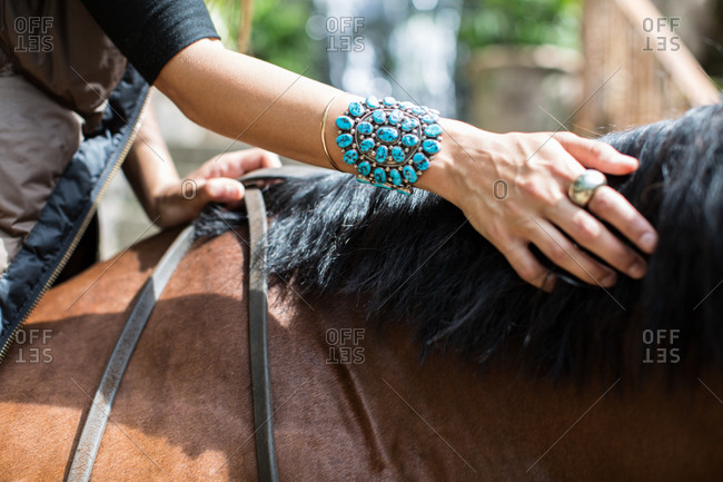 A woman pets the mane of a horse