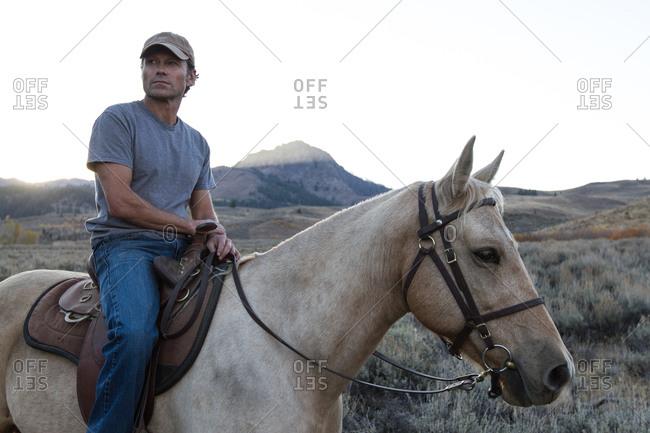 A man riding a horse gazes into the distance