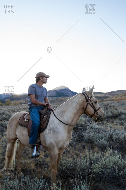 A man and his horse turn their heads to look into the distance
