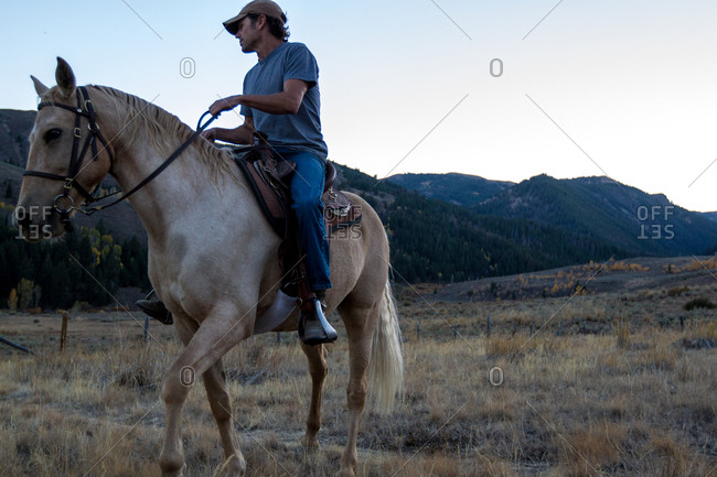 A man holds the reigns of his horse
