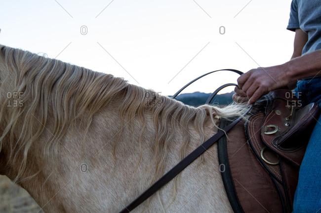 A man controls his horse's reigns