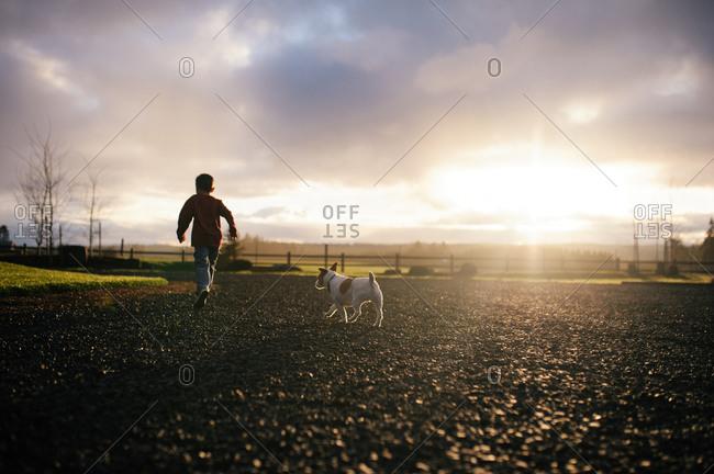 Boy and dog running through sunlit field