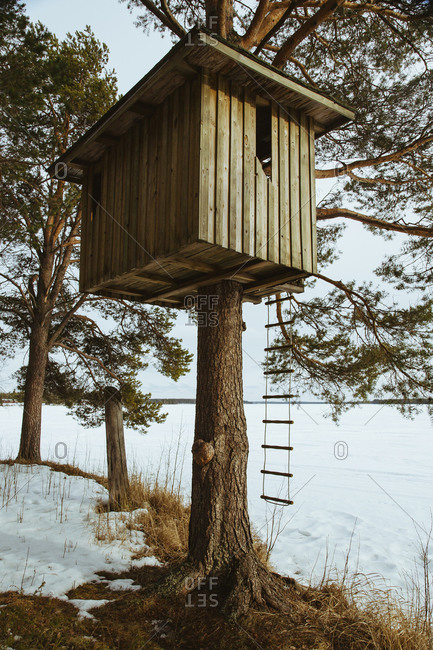 A finnish tree house - Offset
