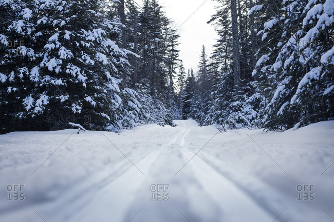 snowmobile tracks stock photos - OFFSET