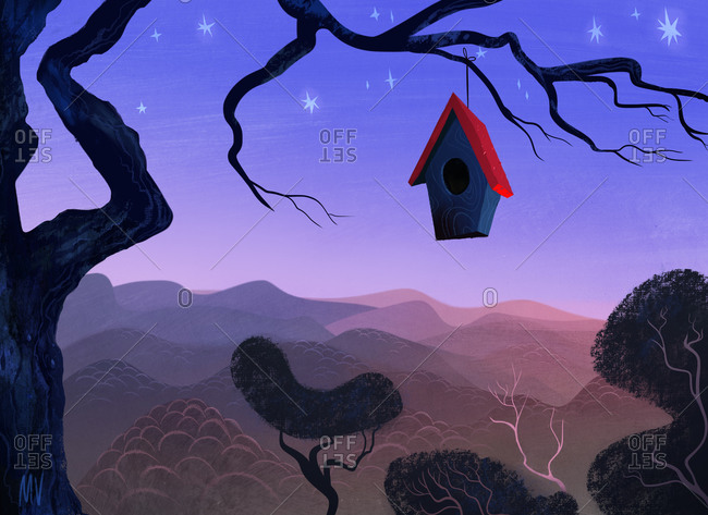Birdhouse hanging on branch overlooking mountains