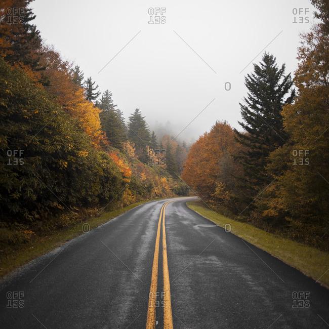 Curvy mountain road through North Carolina