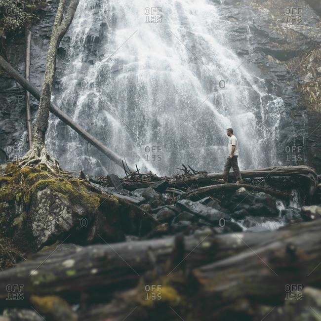 Man walks along tree branch by Crabtree Falls in North Carolina