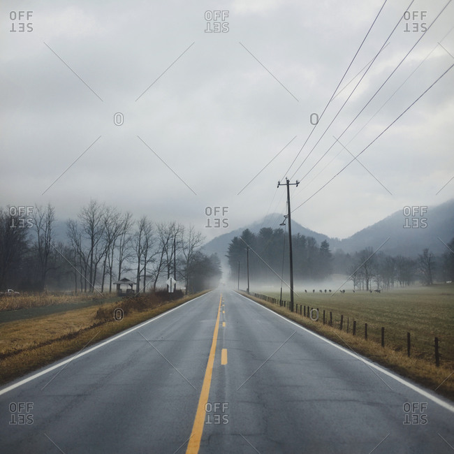 Road disappears into the horizon on a two lane road in North Carolina