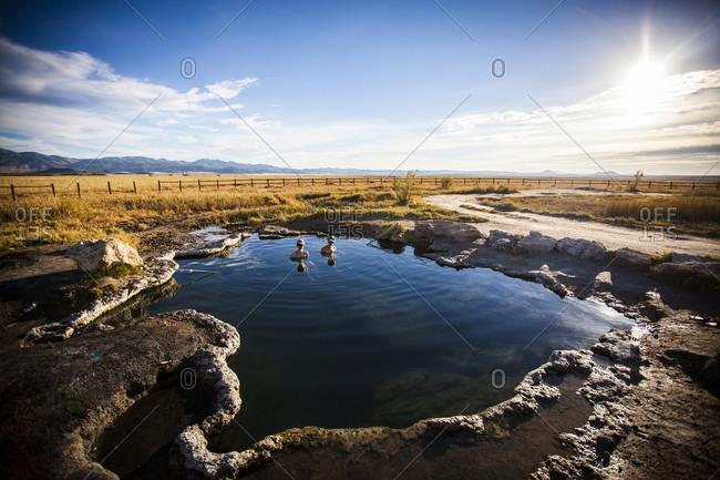 Two ladies taking a swim break, Meadow Hot Springs, Utah