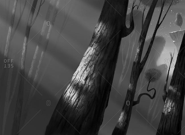 Moonlight casting shadows through woodland