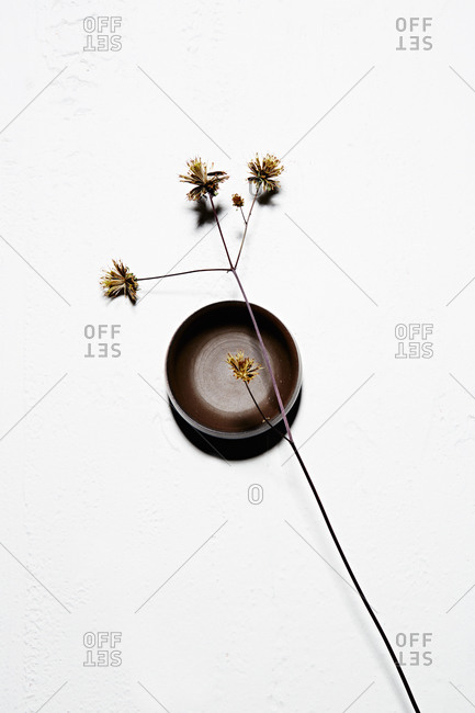 Dried flower on a brown bowl