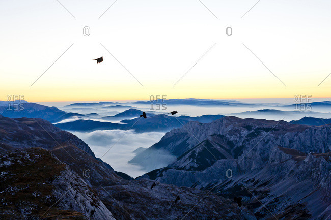 Birds flying over mountains in Styria, Austria