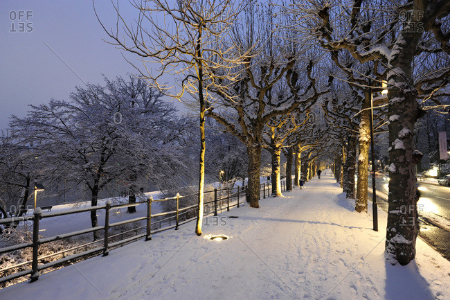Schaumainkai in wintertime, Frankfurt, Germany