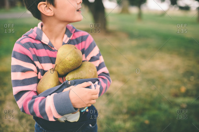 Boy with pears in his shirt
