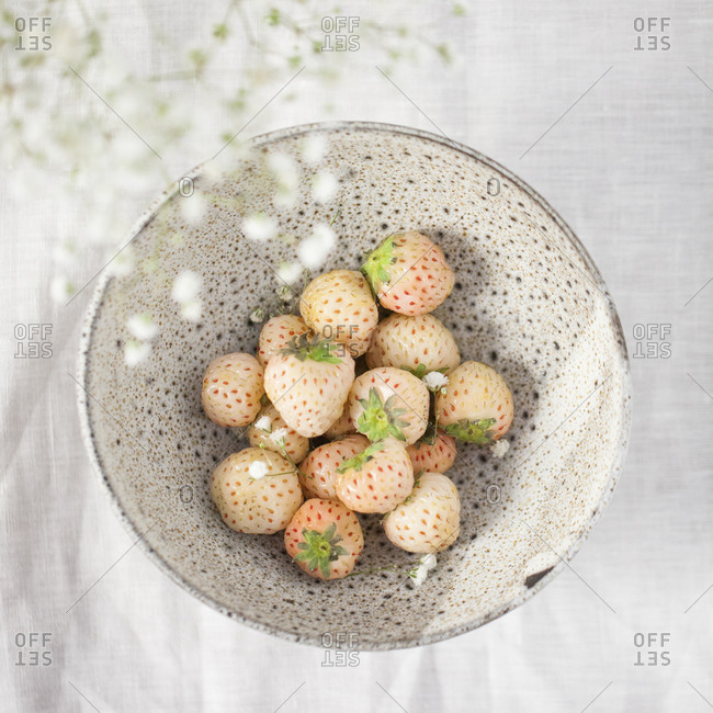 A bowl of pine berries