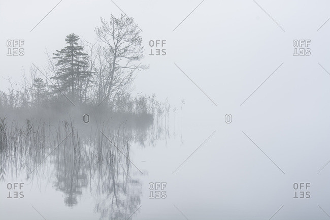 Lake barmsee in morning mist
