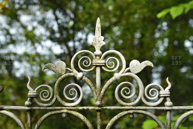 Close-up of garden fence