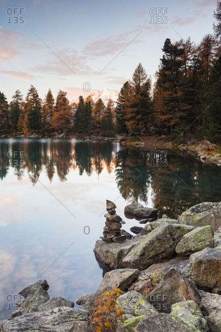 European larch trees reflected in Lago di Saoseo at dawn in autumn