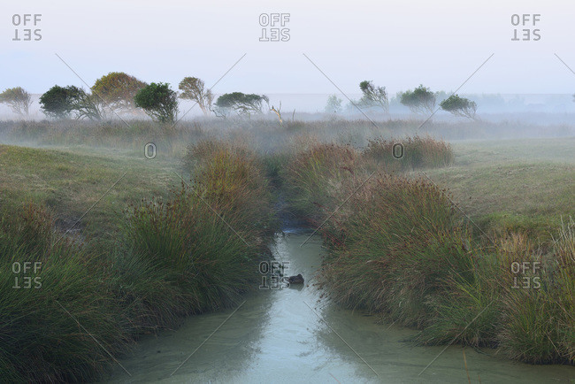 Countryside with water channel and morning mist