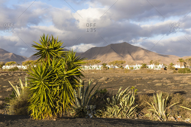 Houses by volcanic mountains, Canary Islands