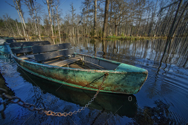 Boat in swamp surrounded by boat