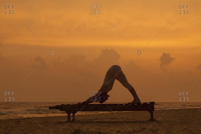 Girl doing downward dog at sunset on the beach in Sri Lanka