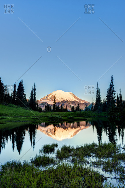 Mount Rainier reflected in pond at sunrise