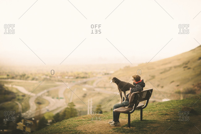 A man and his dog sit on a bench overlooking sunset of a city