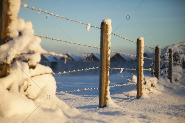 The morning sun illuminate a snow-covered barbed wire fence in Surrey, British Columbia