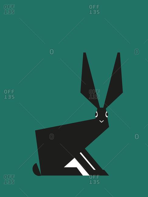 Rabbit on green background