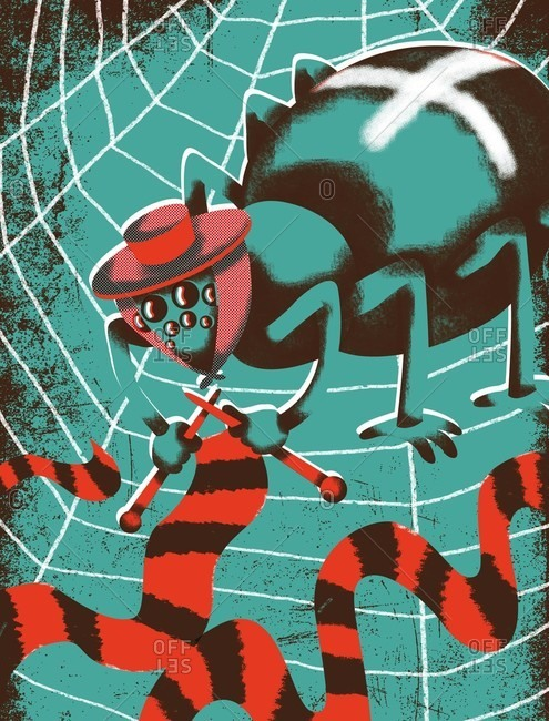 Spider knitting a scarf