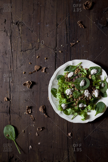 Spinach leaf salad with spelt, pinto beans and a yogurt walnut dressing on a rustic table