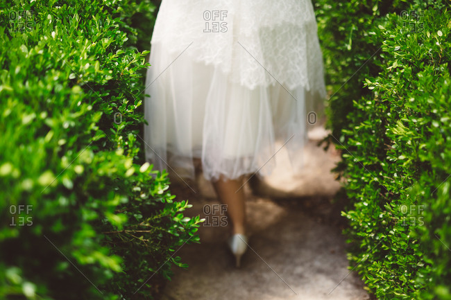 Bride walking down a path lined with hedges