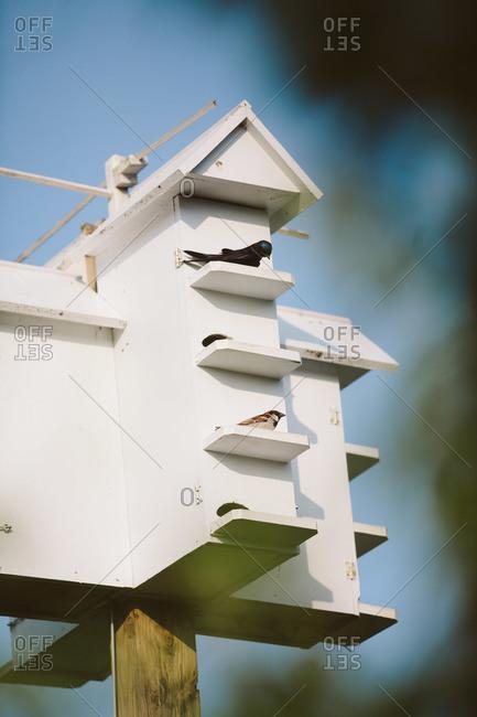 Multi-level birdhouse atop post