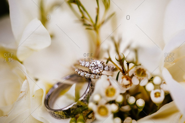 Close up of wedding rings on flowers