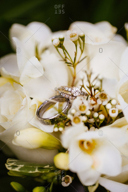 Close up of wedding bands on flowers