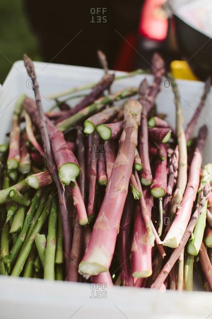 Fresh asparagus stalks in bin
