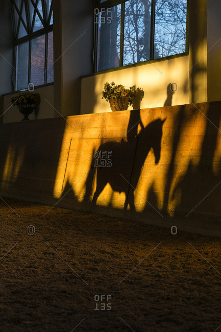 Silhouette of a teenage girl riding horse at riding ring