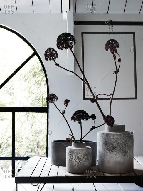 Arrangement of flowers in cement vases near palladian window