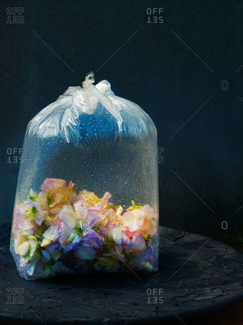 Inflated plastic bag of edible pastel flower blossoms
